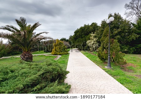 Photo of  Russia city of Sochi Adler district park Southern cultures.