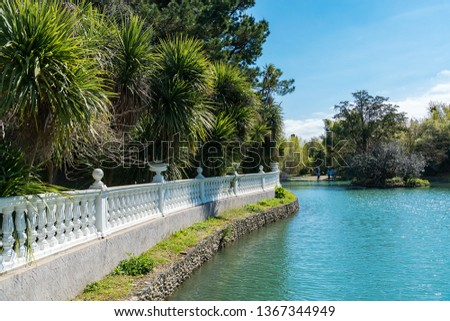 Photo of  Russia city of Sochi Adler district park Southern cultures. Pond with reflection of trees..