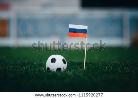 Russia Flag and Football ball on green grass #1115920277