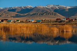 Russia. Gorny Altai. Autumn sunny day on a reed-covered lake on the outskirts of the village of Kosh-Agach.