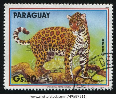 RUSSIA KALININGRAD, 22 APRIL 2017: stamp printed by Paraguay, shows Jaguar, circa 1989