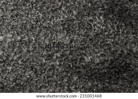 Russian shiny black astrakhan caracul - Lamb fur. Background for winter fashion theme and holiday cards tor new years day