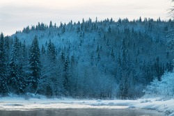 Russian Siberia in winter. Snow-covered taiga (boreal coniferous with domination by spruce and fir forests), scenic river and formation of ice blister (crystocrene) and frost-mist (rime)
