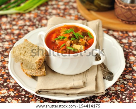 Russian style soup rassolnik, traditional Russian soup with meat and pickled cucumbers, copy space for your text