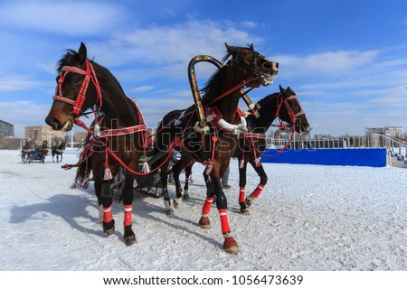 Russian Troika at the racetrack in Russia in winter Foto stock ©