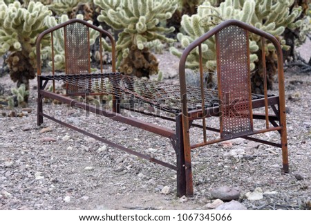 rusted old bedstead among...