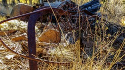 Rusted Scrap Metal on Rocky Ground Obscured by Tall Yellow Grass