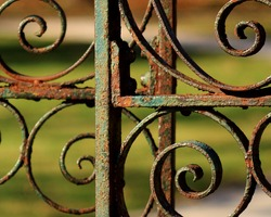 Rusted wrought iron garden gate with chipped paint.