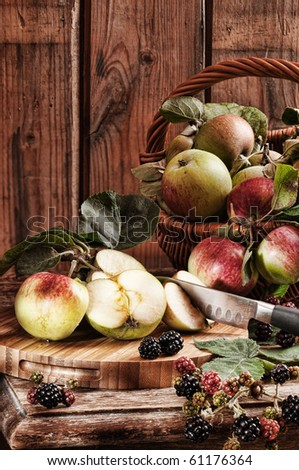 Rustic apples from the orchard with hedgerow blackberries with vintage effect