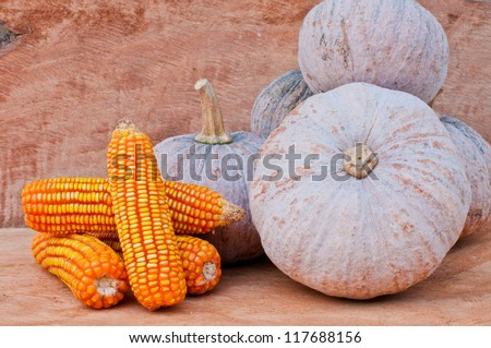 Rustic autumn still life with mini pumpkins and corn on old wood  in background. Macro with shallow dof.