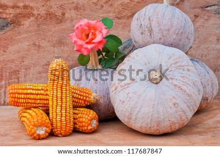 Rustic autumn still life with mini pumpkins,corn and flower on old wood  in background. Macro with shallow dof.