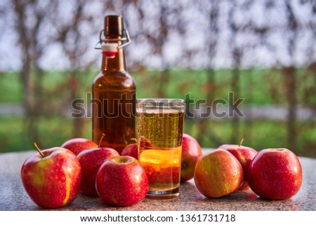 Rustic bottle and glass of fresh sparkling apple cider and red riped apples on the stone granit table in the garden restaurant during spring sunny evening, Picture taken in golden hour before sunset.