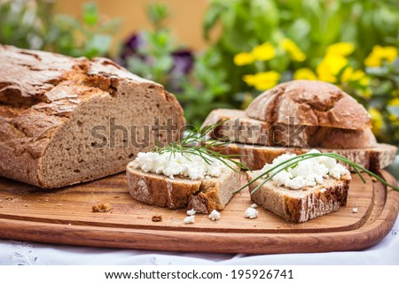 Rustic bread with cottage cheese, for breakfast or snack. Selective focus.