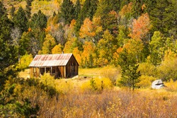 Rustic Cabin in Mountains During Fall Change
