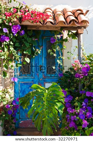 Rustic charm of old door overgrown with exotic plants and palm leaves