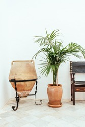 Rustic decoration with old leather chair plant in bright and white space.