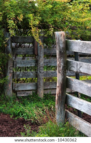 Rustic Fence Posts.
