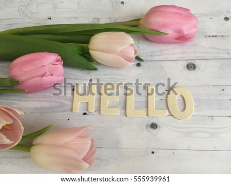 Rustic Pink TulipsSweet Spring Morning With Tulips Hello Valentines Day Wallpaper