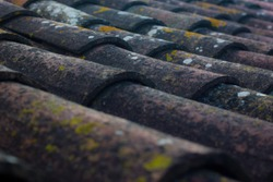 Rustic roof tiles with lichens and moss.