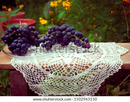 rustic rustic still life. Black grapes on a wooden bench with a carved tablecloth #1502963150