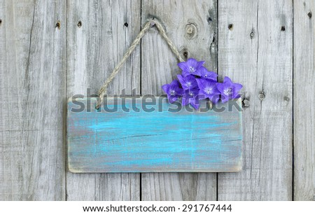 Rustic teal blue blank wood sign with purple balloon flowers hanging on old wooden fence