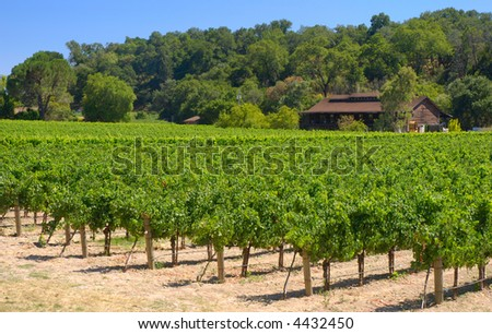 Rustic vineyard and winery located in Napa Valley, California