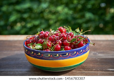 Rustic, vintage or folkish bowl full of red riped juicy and healthy sour cherries harvested in the home organic orchard or garden on the old wooden table outside with blurry green background behind.