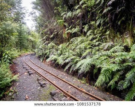 Rustic Vintage Original Railway Rail Tracks Curving Through the Jungle #1081537178