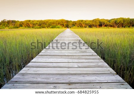 Rustic walkway over marsh land outside in the summer with warm green grass. Wood planks leading to distance. Sun setting with warm tones.