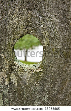 Rustic Wooden Fence with Knothole and Lichens showing a tree and lake  through the knothole