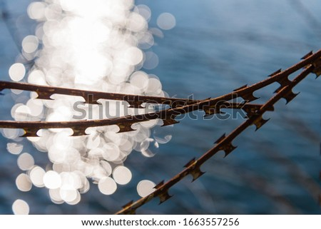 rusty barbed wire with water in background, NATO wire