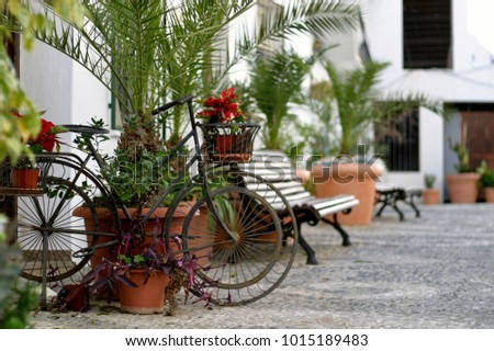 rusty bike  plants and benches...