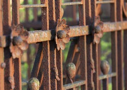 Rusty flower decoration on old cemetery fence in warm evening light. Rusting is an electrochemical process. Shallow depth of field photo.