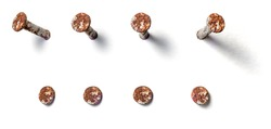 Rusty nail from different perspectives on a white background