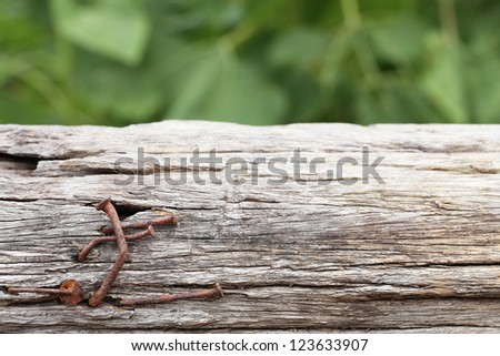 rusty nails in wood