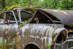 rusty old vintage cars, some with missing doors and windows, Ivan's Junk Yard, Car Cemetry, damaged cars in Sweden close to norway