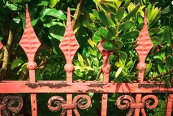 Rusty orange color antique metal fence detail Victorian era with green garden leaves