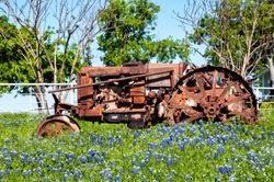 Rusty Tractor in field of bluebonnets
