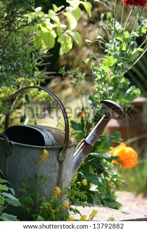 Rusty Watering Can