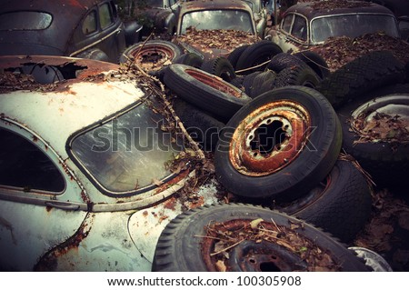 Rusty wheels and autumn leaves lying on vintage cars in an old auto graveyard.
