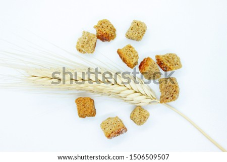 Rye crackers and rye spike located on a white background #1506509507