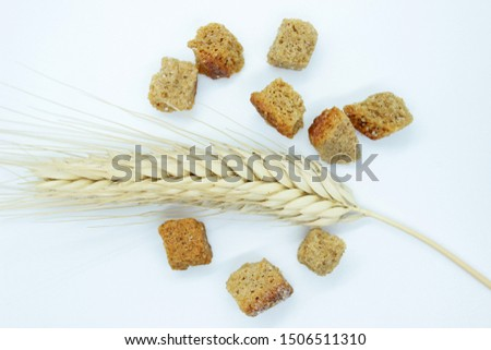 Rye crackers and rye spike located on a white background #1506511310