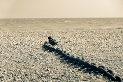 Rye Harbour Nature Reserve length old rusty heavy chain left lying on stony beach in split toned old-fashioned image style.