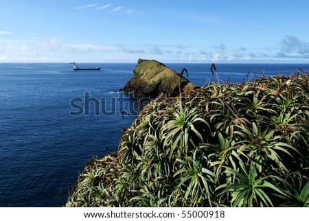 S. Miguel Island