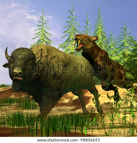 Saber-Tooth Tiger - A Saber-Tooth Cat pounces onto a frightened Buffalo in prehistoric times.