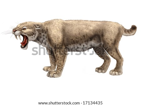 Saber-Toothed Cat - stock photo