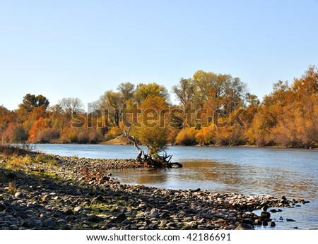 Sacramento River in the Fall