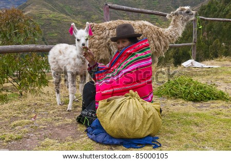 SACRED VALLEY, PERU - MAY 27: Unidentified Peruvian woman in traditional colorful clothes sits with her alpacas in Sacred Valley, Peru on May 27, 2011. The Sacred Valley is close the ancient city of Machu Picchu.