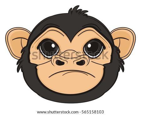 sad snout of monkey