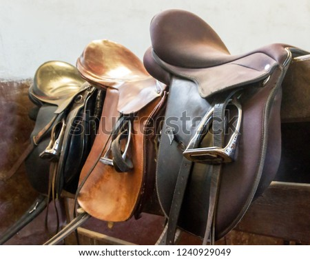 Saddle with stirrups on stallion running racing in the manege.